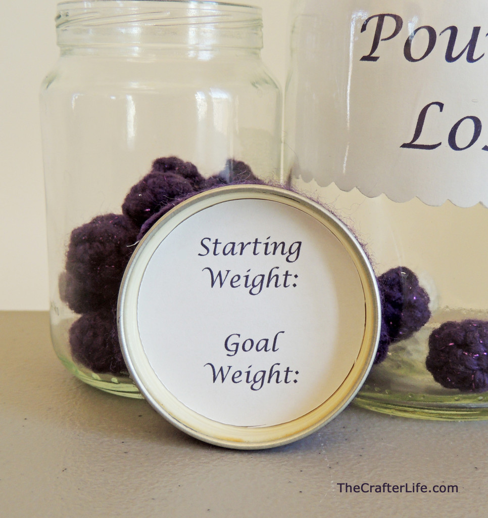 Weight Loss Tracking Crochet Marbles